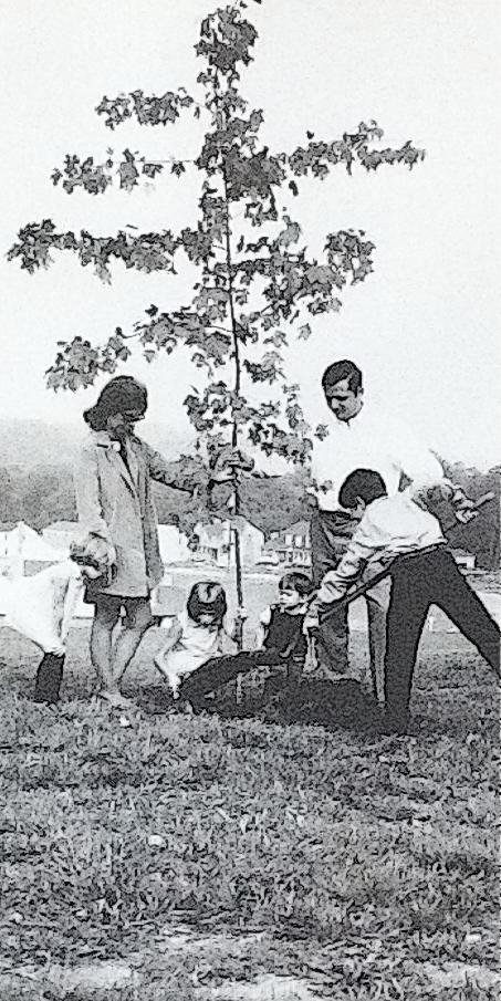 Family and Tree